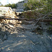 Old water pipe exposed by erosion at Miracle Hill & Two Bunch Palms Trail (6