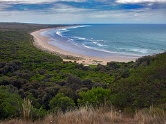 Beach at Great Ocean Road in Victoria