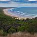 Beach at Great Ocean Road in Victoria