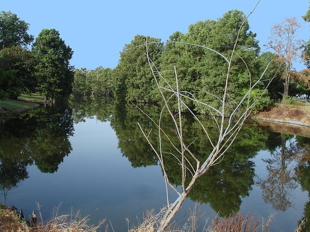 Bayou / Indianola, Mississippi. USA - 9 Juillet 2010 - Ciel bleu photofiltré