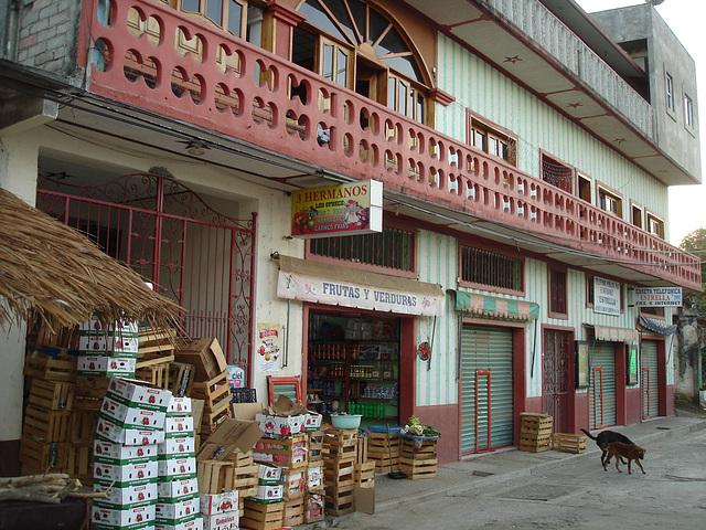 Puerto Angel, Oaxaca. Mexique /  14 janvier 2011