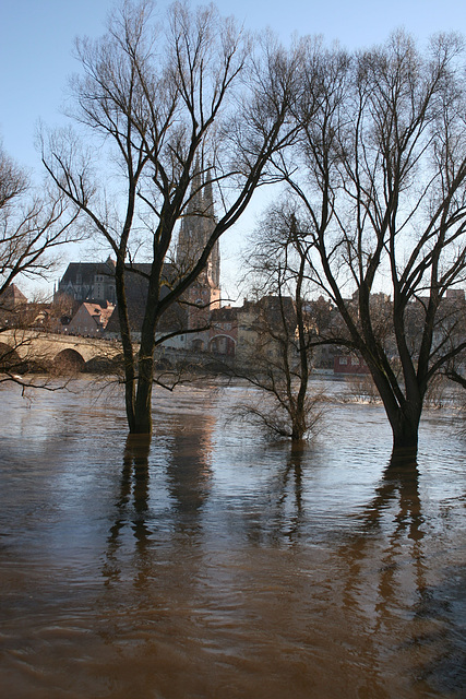 regensburg flood