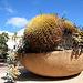 Balboa Park (8069)