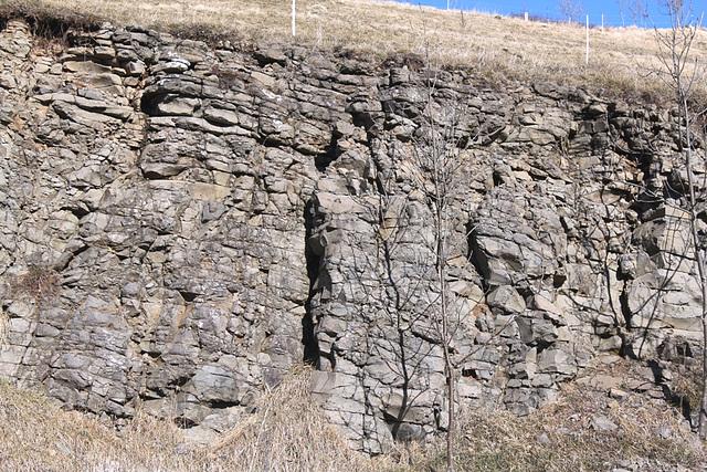 Basalte altéré (2)-Age 8 m.a.