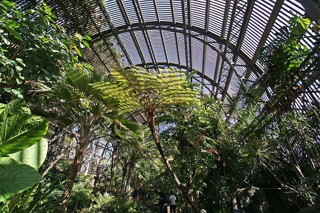 Balboa Park Botanical Pavilion (8083)