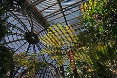Balboa Park Botanical Pavilion (8084)