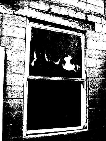Fantômes observateurs / Observant ghosts - Vardaman, Mississippi. USA - 9 juillet 2010.