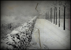 L'hiver à l'infini...