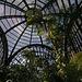 Balboa Park Botanical Pavilion (8102)