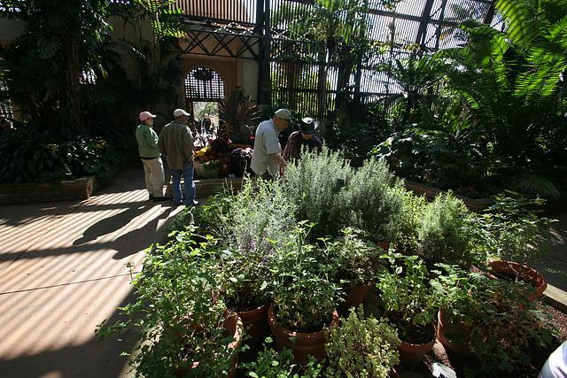 Balboa Park Botanical Pavilion (8117)