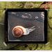 ice snail (chiche)