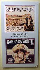 Barbara Worth (8307)