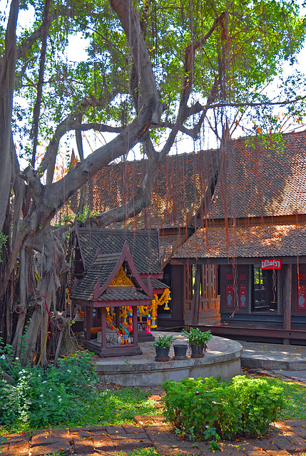 Backyard in the Thai Old Market Town ตลาดโบราณ