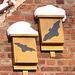 20101218 9027Aw [D~LIP] Fledermaus und Schnee