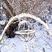 20101218 9028Aw [D~LIP] Schneelandschaft