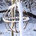 20101218 9029Aw [D~LIP] Weidengeflecht und Schnee