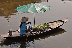 Thai vendor woman selling Mangos มะม่วง