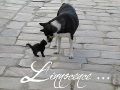~ L'innocence ~
