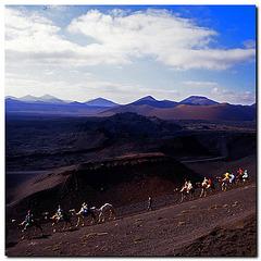 Kamelritt im Nationalpark Timanfaya