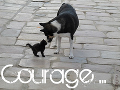~ Courage ~