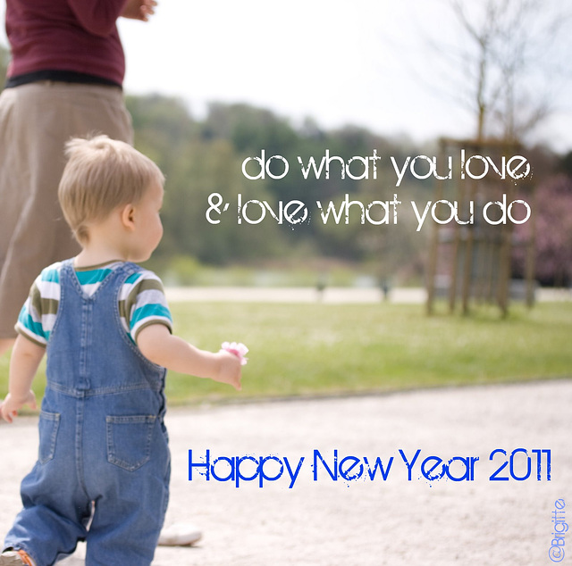 ~ Happy New Year 2011 ~