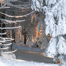 la neige et le feu : le chant du feu