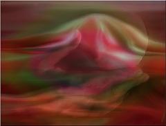 Je t'emmènerai vite   Là où mon cœur est déjà   Là où la joie et le rire   Nous serviront de lit et de toit...