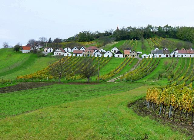 """Kellergasse """"Galgenberg"""" bei Wildendürnbach"""