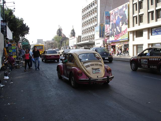 Mexico City DF / 11 janvier 2011.