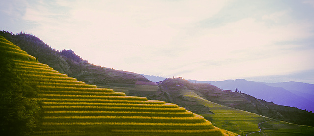Ping'An Rice Terrace