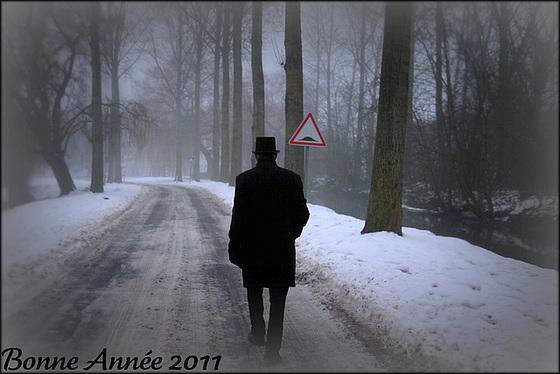 Bonne Année 2011...