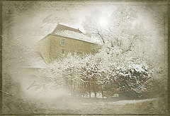froid d'hiver