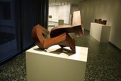 169.HirshhornMuseum.SW.WDC.24January2010