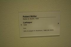 172.HirshhornMuseum.SW.WDC.24January2010