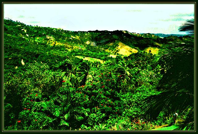 Lush Greens, Ocean Air