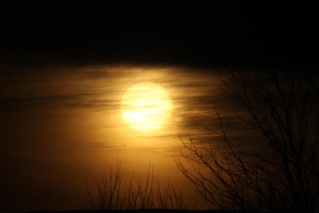 Le soleil d'hiver