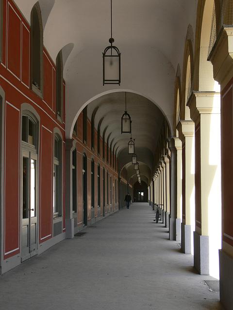 München - Hofgarten