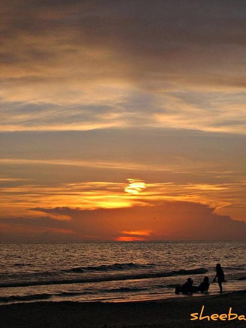 Sunset brilliance..