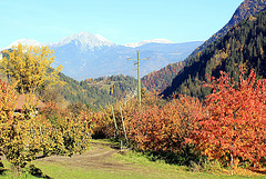 Blick aus dem Ultental, Südtirol