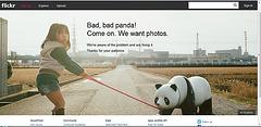 bad panda