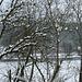Winter im Regental