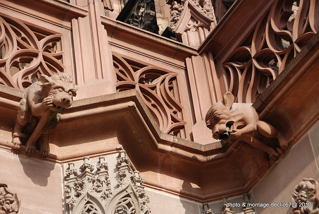 Strasbourg :la Cathédrale 65 gargouilles