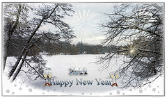 ☆Happy new Year☆ dear Iper friends