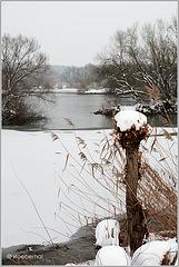 Winter at river Main