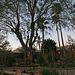 Hacienda Hot Springs Inn - DHS Spa Tour 2011 (8805)