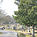 Myrtle Hill Cemetery -