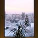 Fenster mit Weitblick