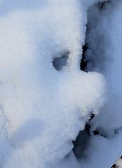 Portrait de neige