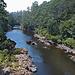 Arthur River
