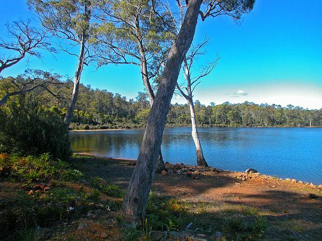 Little Pine Lagoon
